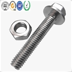 Stainless Steel 304 316 Hex Head Flange Screw and ISO 4032 Hex Nut
